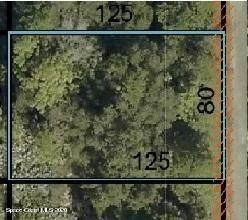 416 Garvey Road SW, Palm Bay, FL 32908 (MLS #892733) :: Premier Home Experts