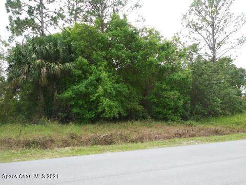 1558 Manzanita Street NW, Palm Bay, FL 32907 (MLS #898699) :: Blue Marlin Real Estate