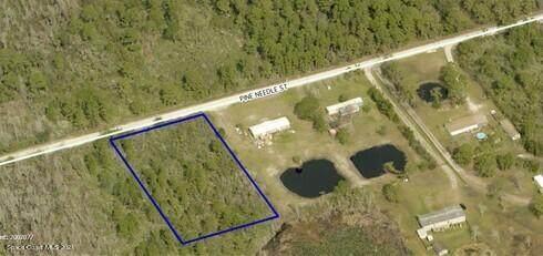 Tbd Pine Needle Street, Mims, FL 32754 (MLS #898894) :: Dalton Wade Real Estate Group