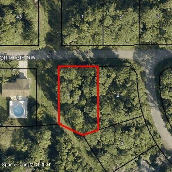 1611 Hayworth Circle NW, Palm Bay, FL 32907 (MLS #900197) :: Premium Properties Real Estate Services