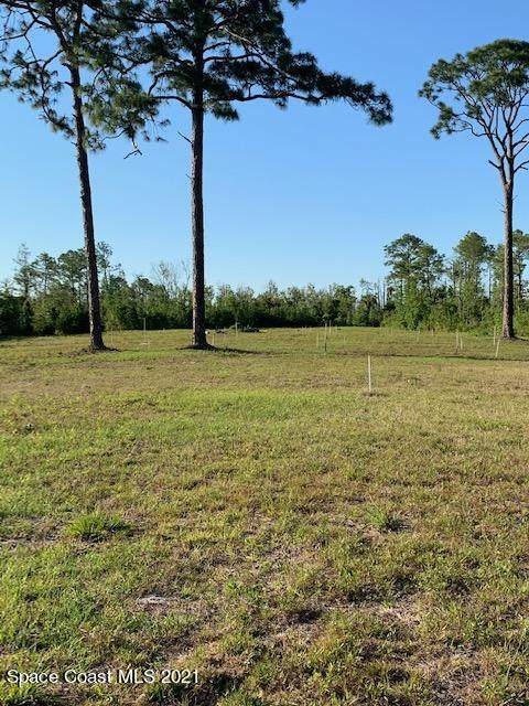 Xxxx Eagles Place, Titusville, FL 32796 (MLS #902064) :: Premium Properties Real Estate Services