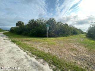 743 Steward Street, Palm Bay, FL 32908 (MLS #902935) :: Armel Real Estate