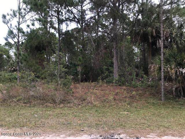 2675 Tolman Avenue SE, Palm Bay, FL 32909 (MLS #902984) :: Armel Real Estate