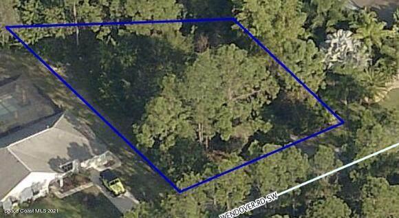 206 Wendover Road SW, Palm Bay, FL 32908 (MLS #903919) :: Armel Real Estate