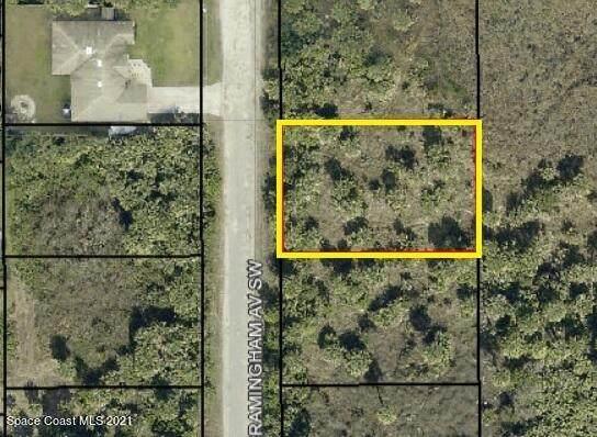 3145 Framingham Avenue SW, Palm Bay, FL 32908 (MLS #904199) :: Armel Real Estate