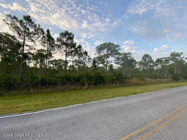 6895 Indian River Boulevard, Grant Valkaria, FL 32949 (MLS #904322) :: New Home Partners