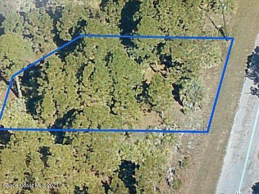 2618 Feise Avenue SE, Palm Bay, FL 32909 (MLS #904579) :: New Home Partners
