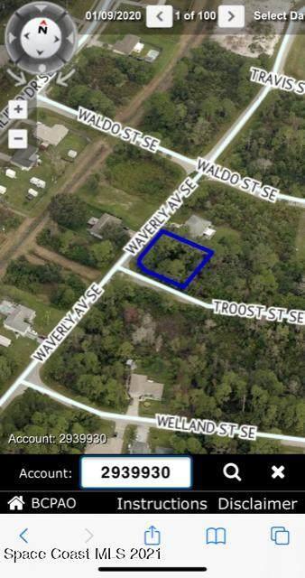 1991 Waverly Avenue SE, Palm Bay, FL 32909 (MLS #904625) :: New Home Partners