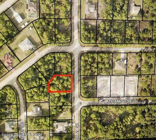 2618 Feise Avenue SE, Palm Bay, FL 32909 (MLS #907684) :: Engel & Voelkers Melbourne Central