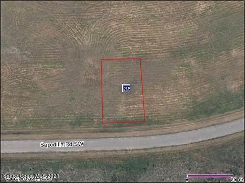 2665 Sapodilla Road SW, Palm Bay, FL 32908 (MLS #907898) :: Armel Real Estate