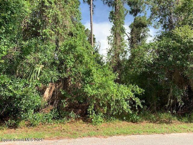 1350 Rascal Street SE, Palm Bay, FL 32909 (#908271) :: The Reynolds Team | Compass
