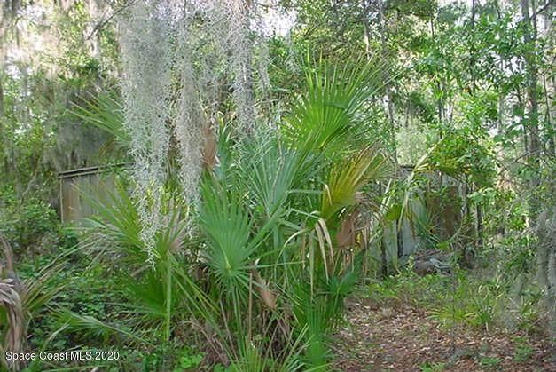0 Sisson Road, Titusville, FL 32780 (MLS #910941) :: Keller Williams Realty Brevard