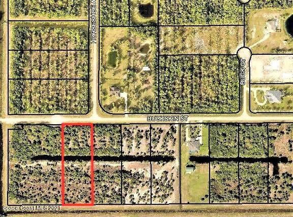 357 Buckskin Street, Palm Bay, FL 32909 (MLS #914139) :: Vacasa Real Estate