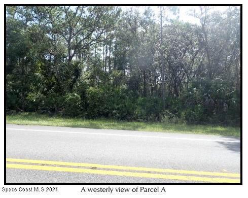 434 Sr, Chuluota, FL 32766 (MLS #916674) :: Vacasa Real Estate