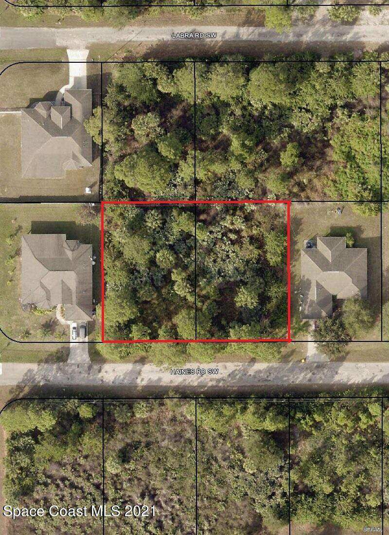 187 & 179 Haines (2 Lots) Road - Photo 1
