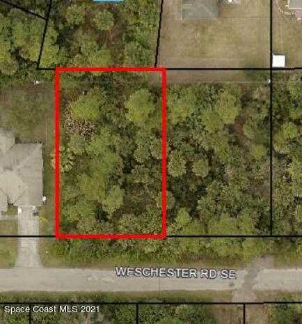 1107 Weschester Road SE, Palm Bay, FL 32909 (MLS #918687) :: Dalton Wade Real Estate Group