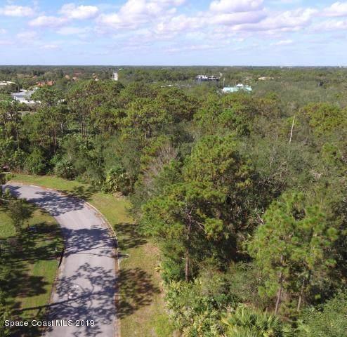 1841 NE Market Circle NE, Palm Bay, FL 32905 (MLS #858177) :: Blue Marlin Real Estate