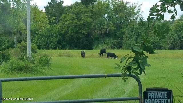 1560 County Line Road - Photo 1