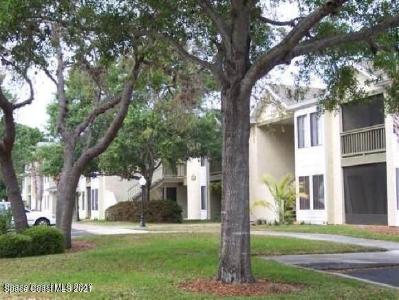 3504 Sable Palm Lane - Photo 1