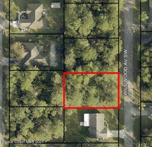 582 Wildwood Avenue SW, Palm Bay, FL 32908 (MLS #903779) :: Armel Real Estate