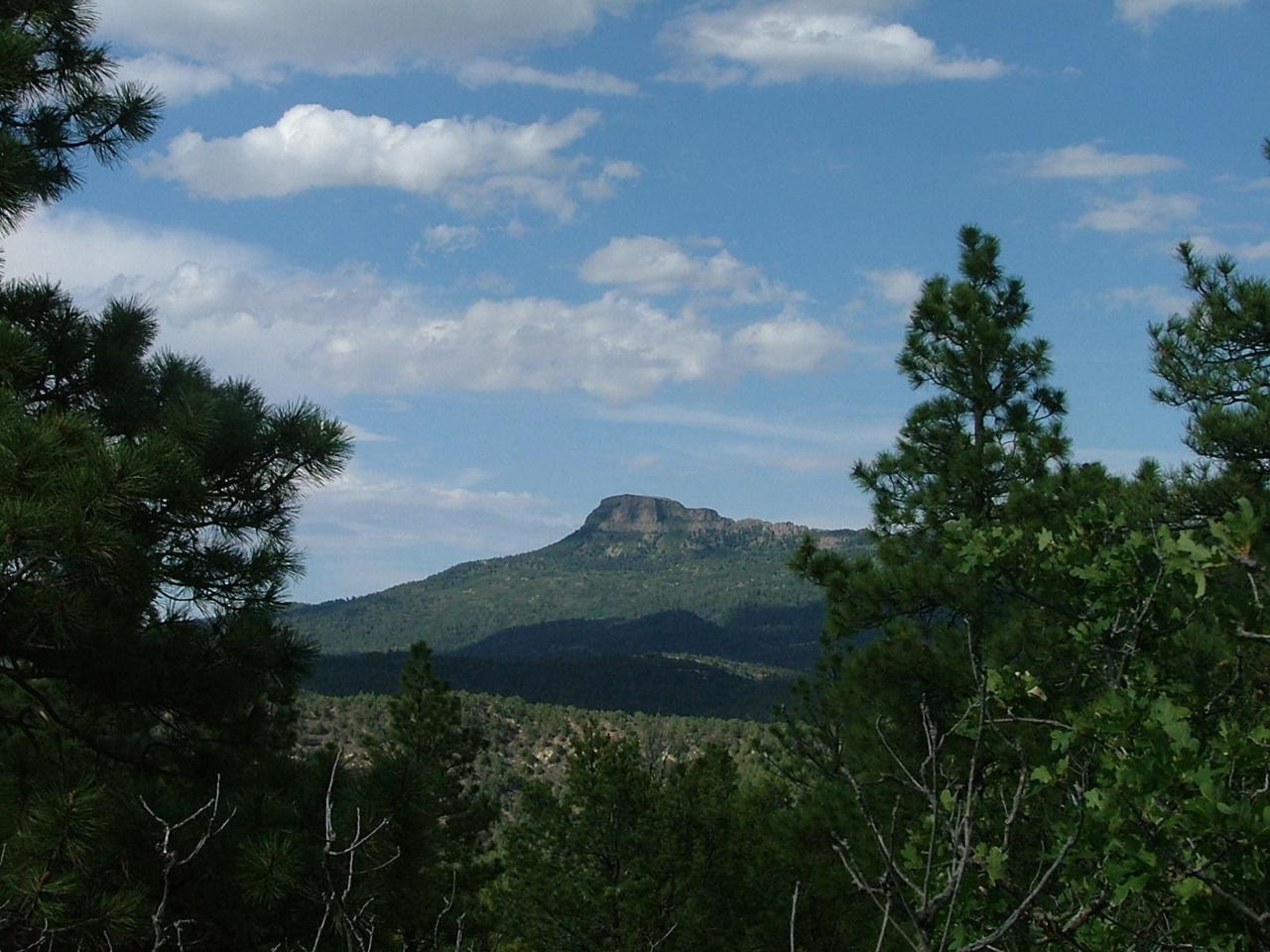36351 Old Mission Ridge - Photo 1