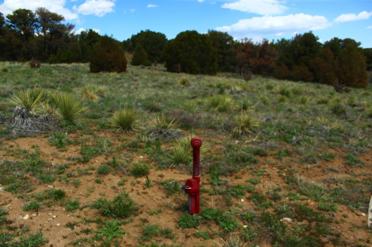 Lot 20 Navajo Ranch Resorts 2 - Photo 1