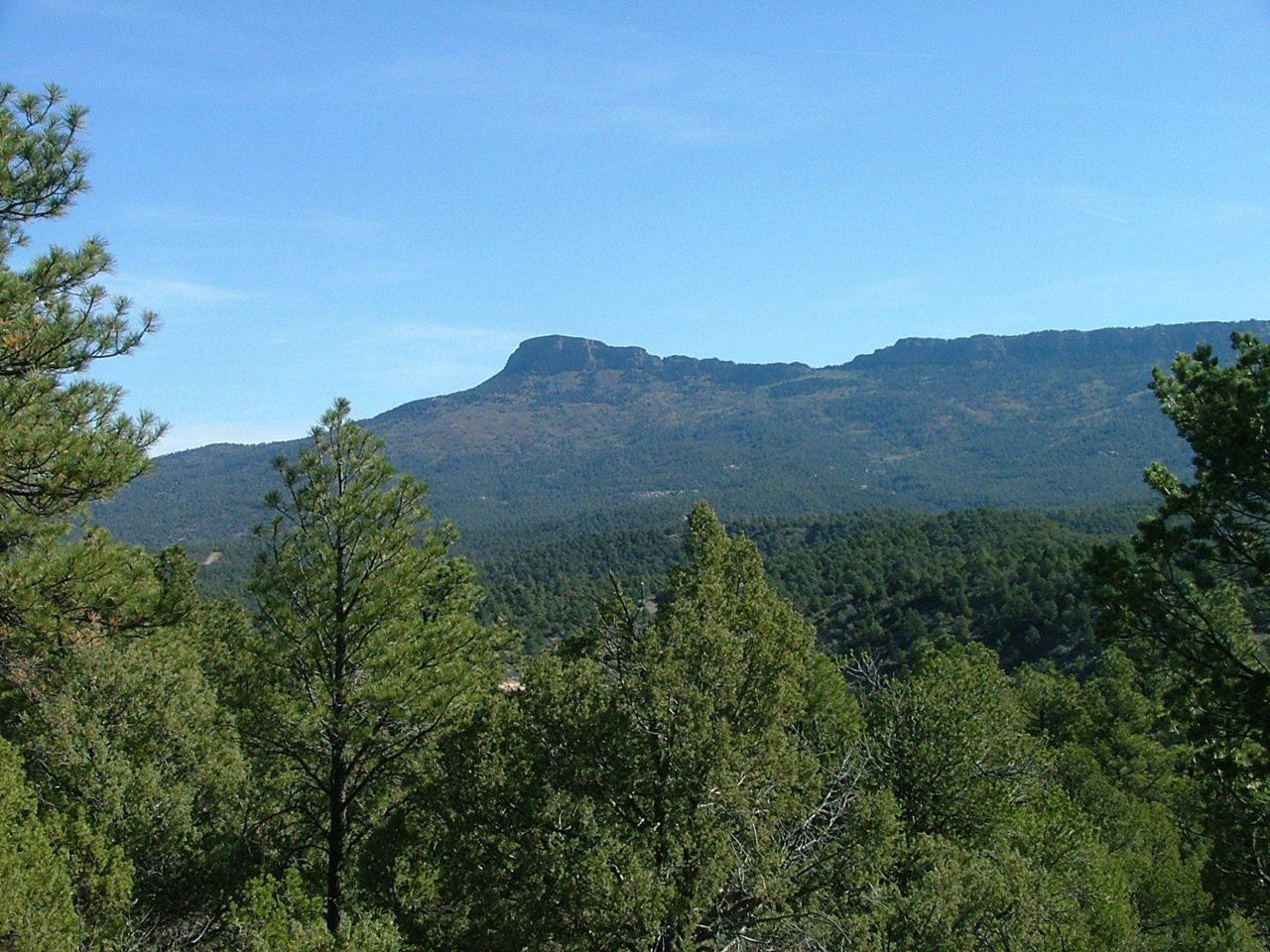 4135 Fisher Peak Pkwy - Photo 1