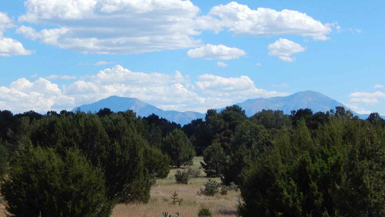 Twin Lake Ranches - Photo 1