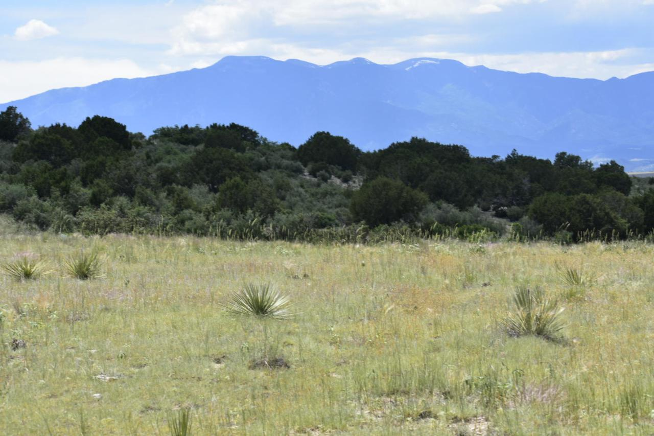 Sikes Ranch Lots - Photo 1