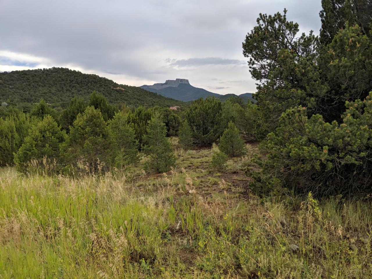TBD Reserve At Fishers Peak - Photo 1