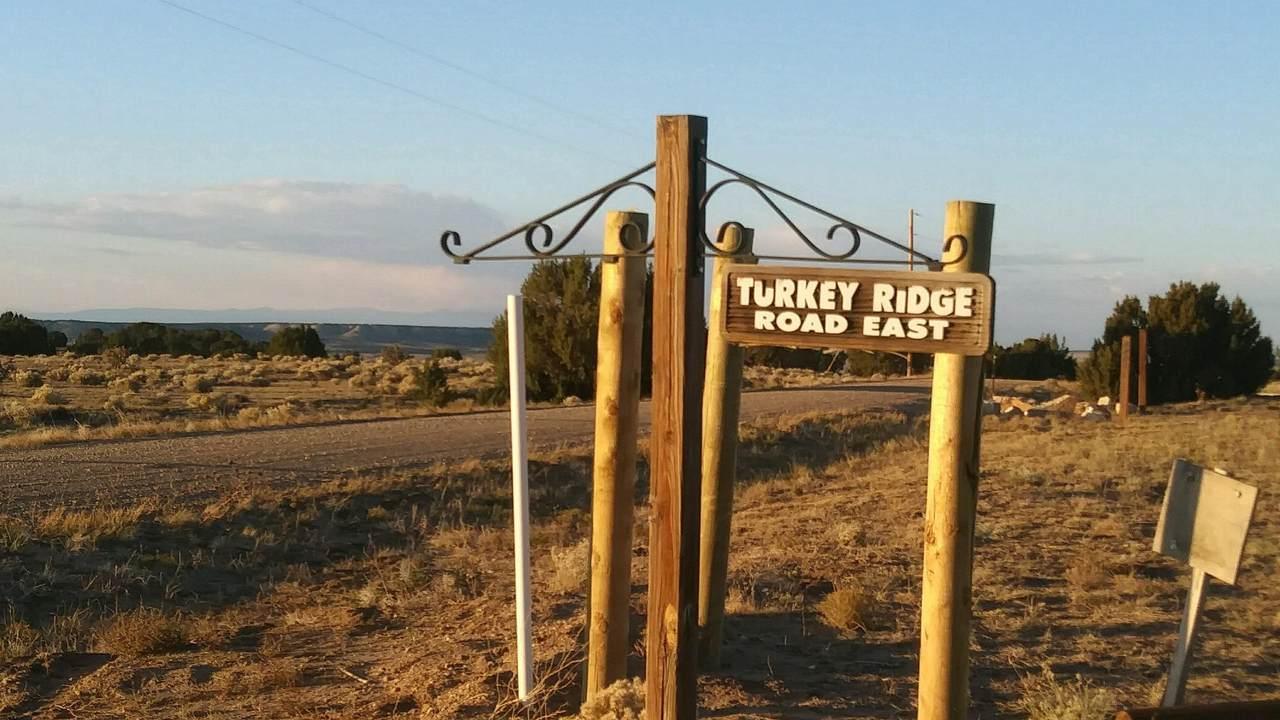 TBD Turkey Ridge Road E - Photo 1