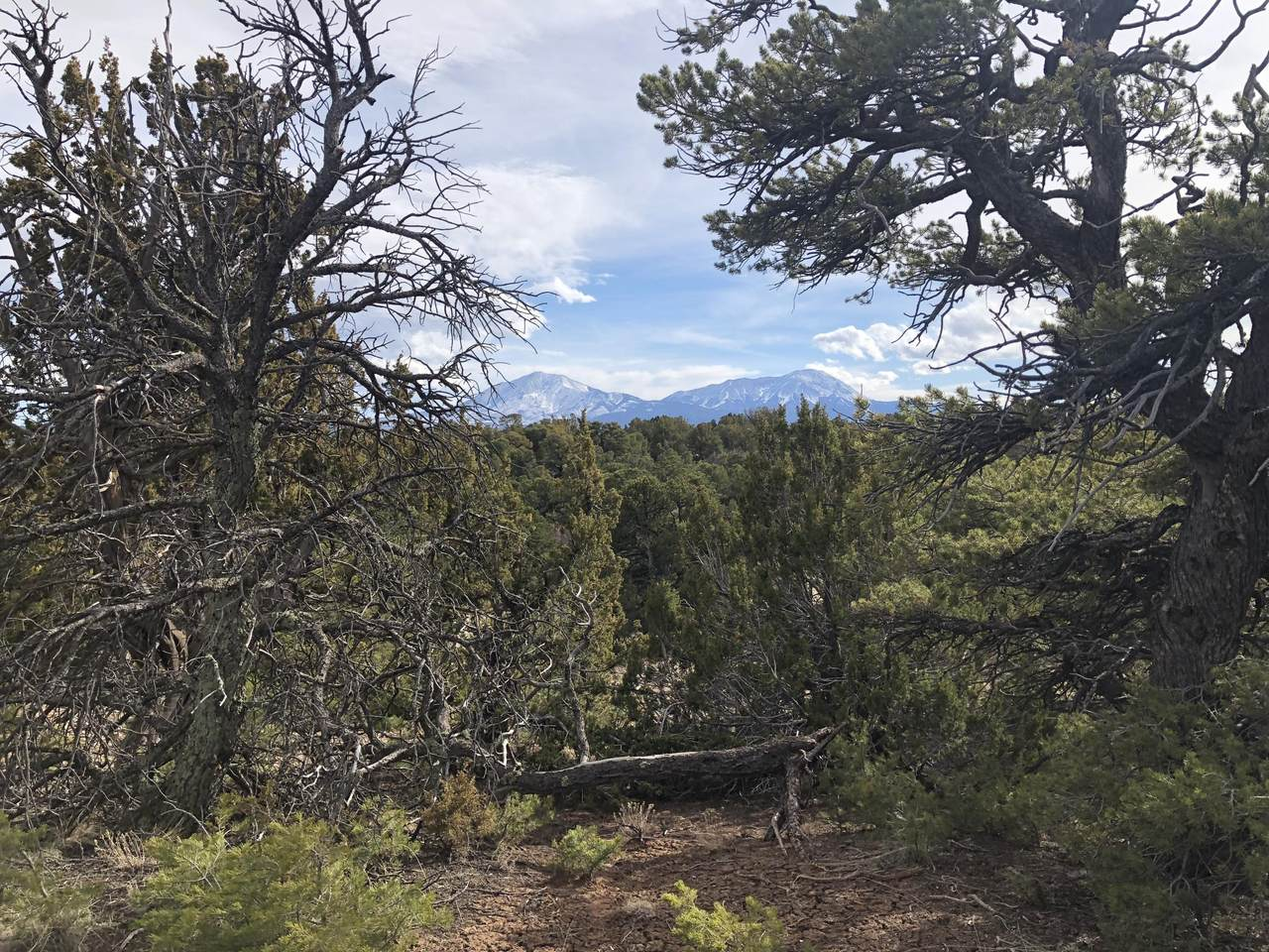 66 Navajo Ranch Res - Photo 1
