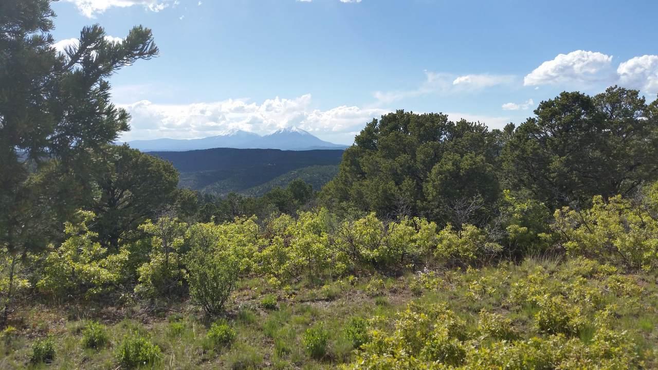 Lot 89 Ponderosa Hills - Photo 1