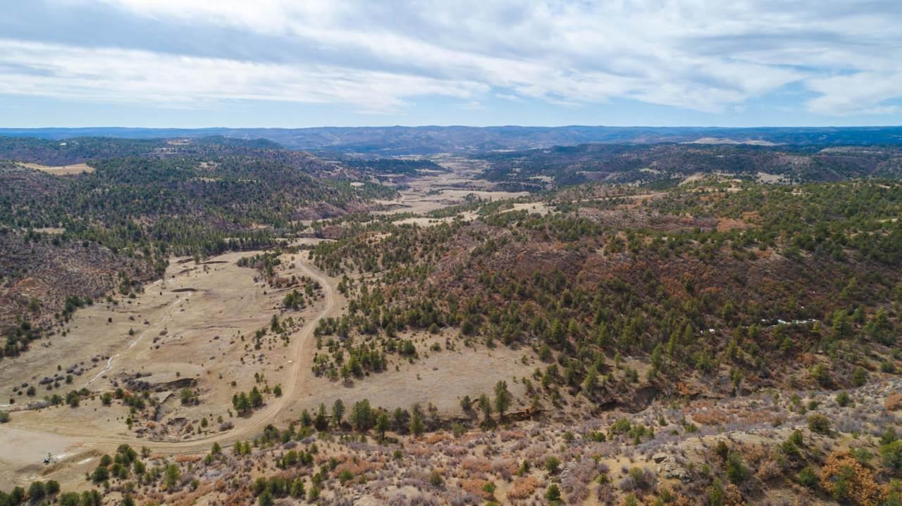 TBD 40 Acres - Photo 1