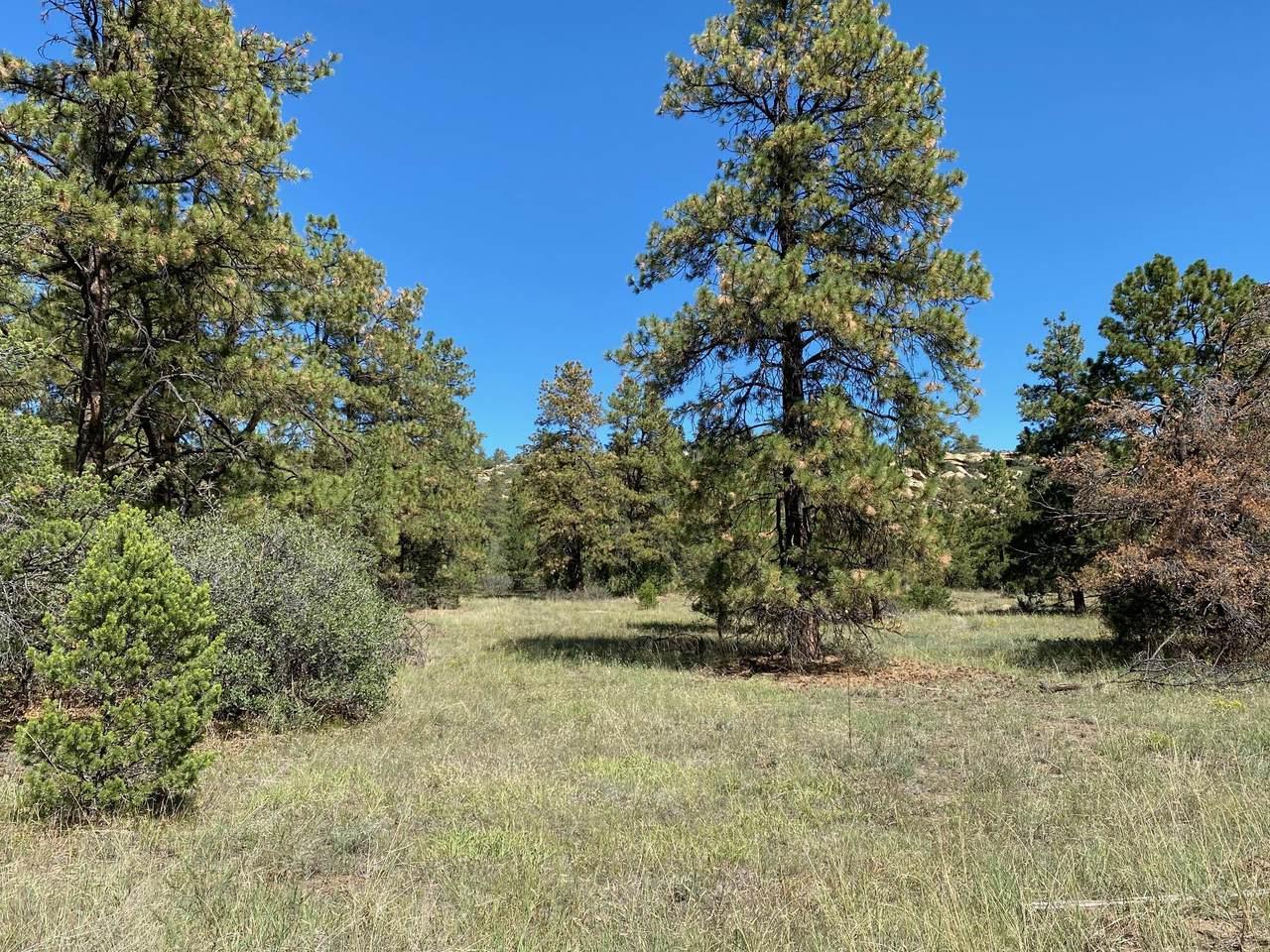 TBD Rancho La Garita Lot 137 - Photo 1
