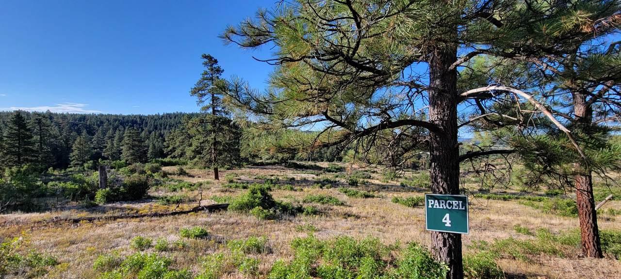 Beaver Creek Ranch Drive - Photo 1