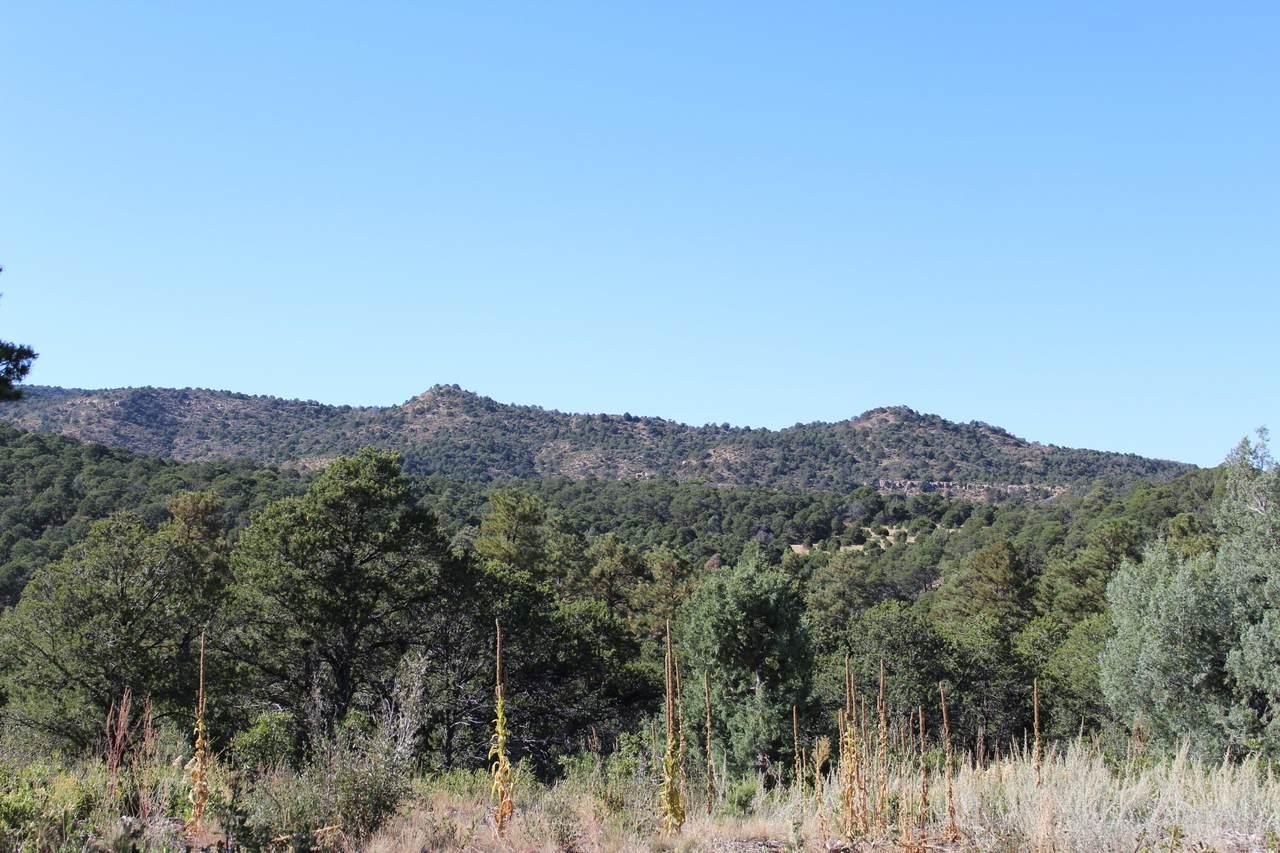 TBD Fisher Peak Ranch Lot M5 - Photo 1