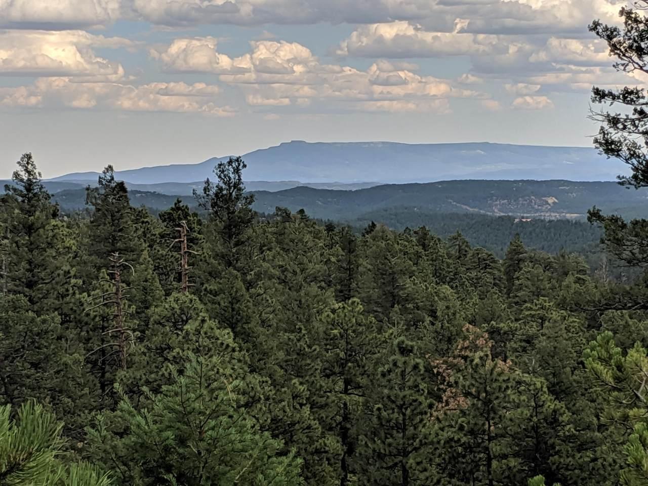 TBD North Fork Ranch - Photo 1
