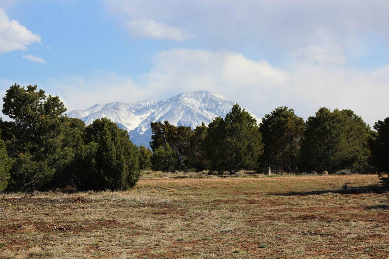3019 Comanche Drive - Photo 1