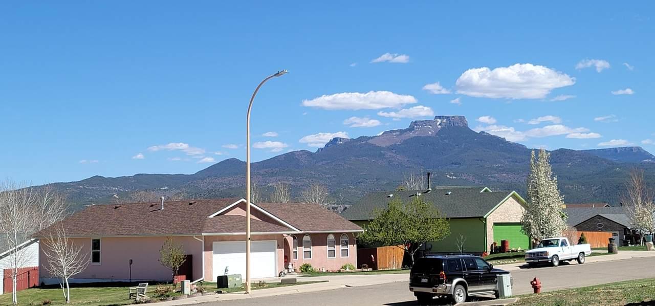 807 Shoshone St - Photo 1