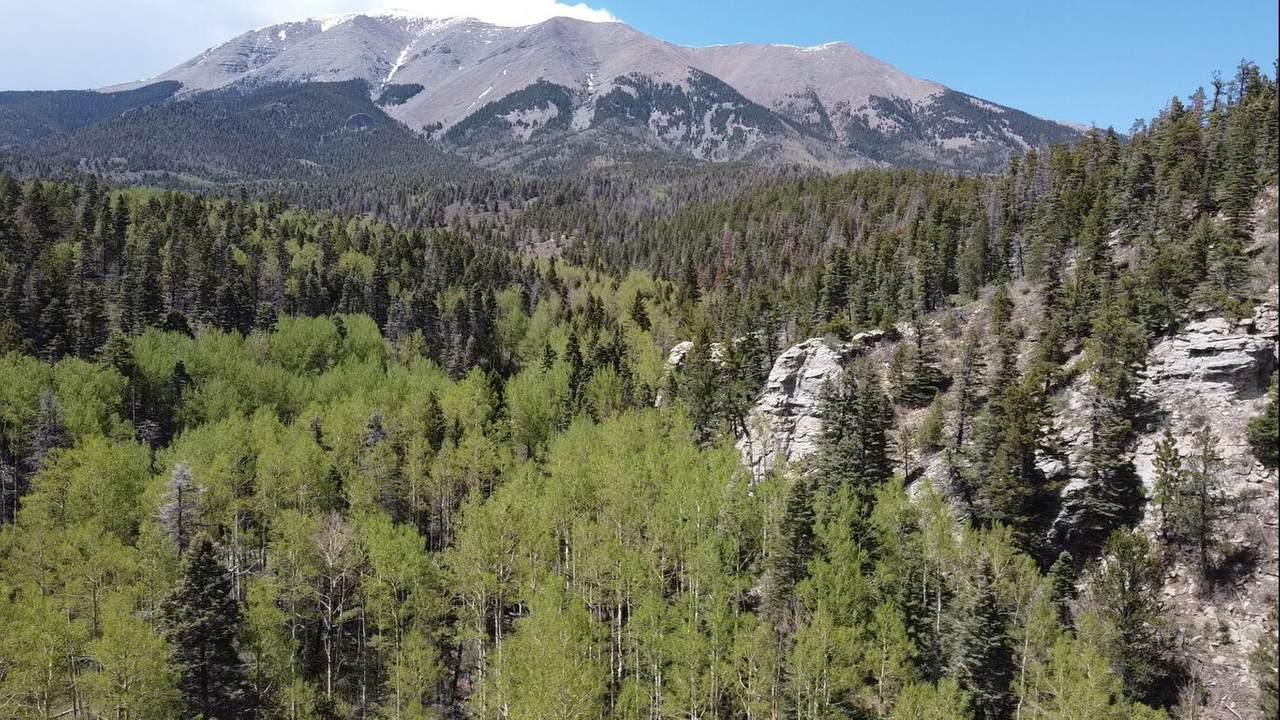 Tbd Mt Elbert Drive - Photo 1