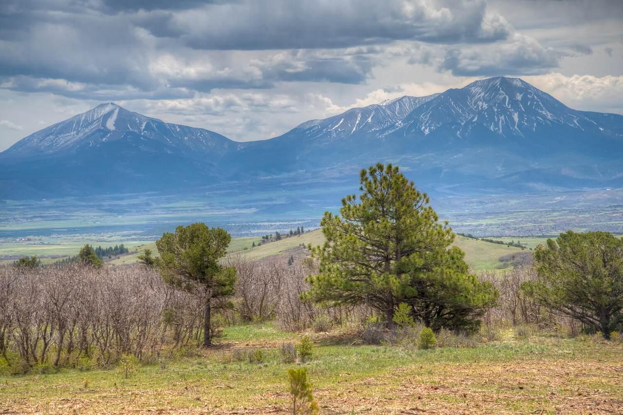 TBD Tres Valles - Photo 1