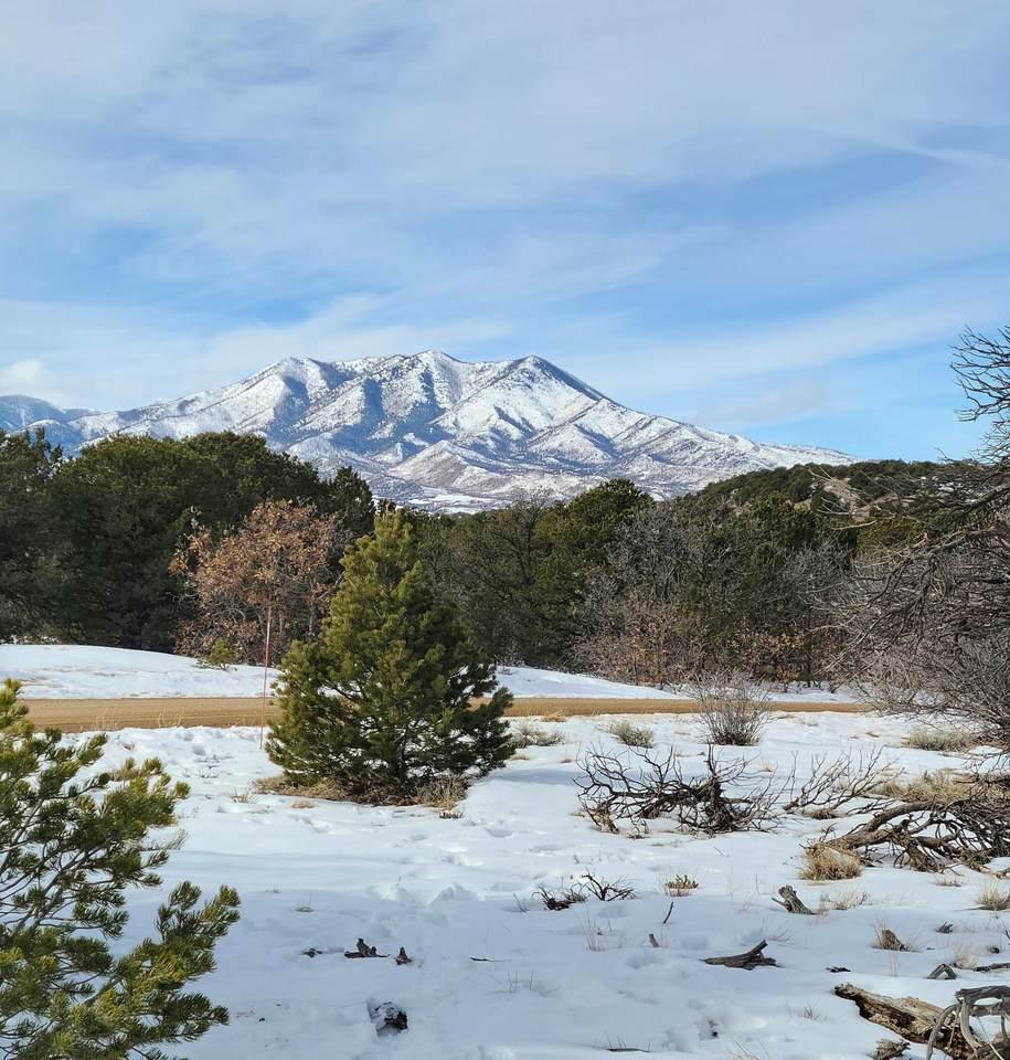 TBD Navajo Ranch Resorts #3 - Photo 1