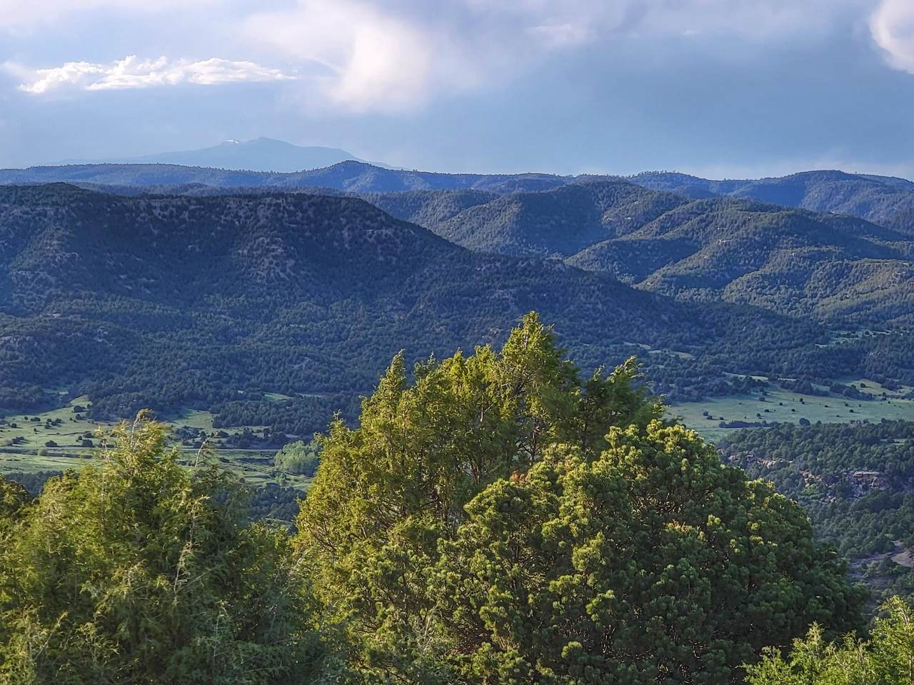 TBD Delagua Canyon Ranches Unit 3 - Photo 1