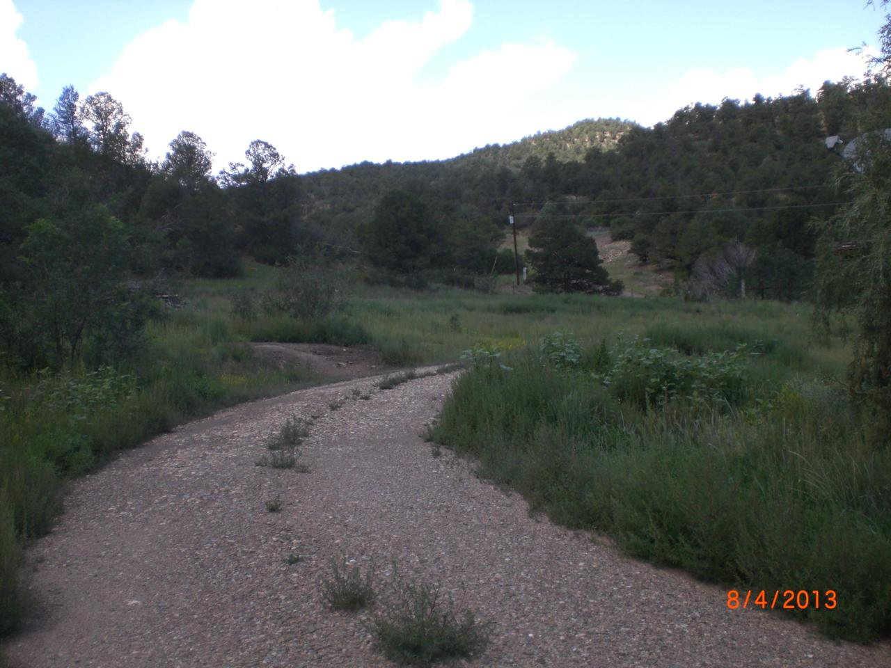 25990 Middle Fork Trail- Widow Woman - Photo 1