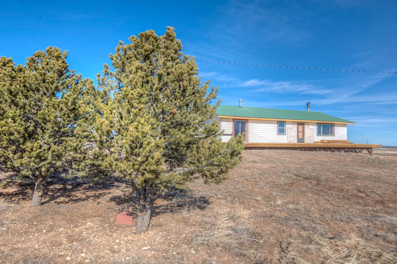 1315 Co Rd 451 - Photo 1