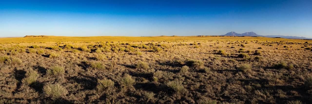 Lot 216 Colorado Land And Livestock - Photo 1