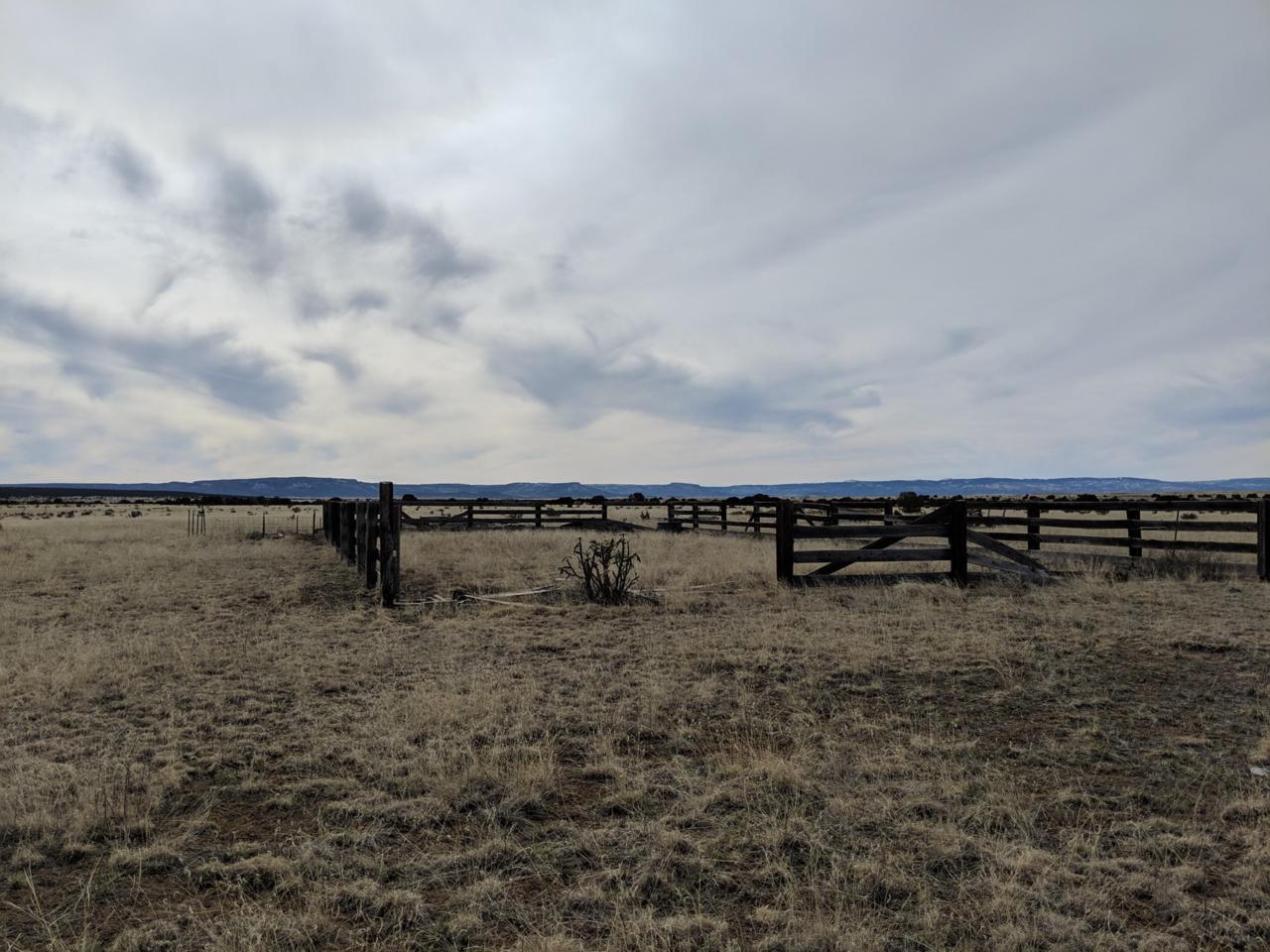 TBD County Road 133 - Photo 1
