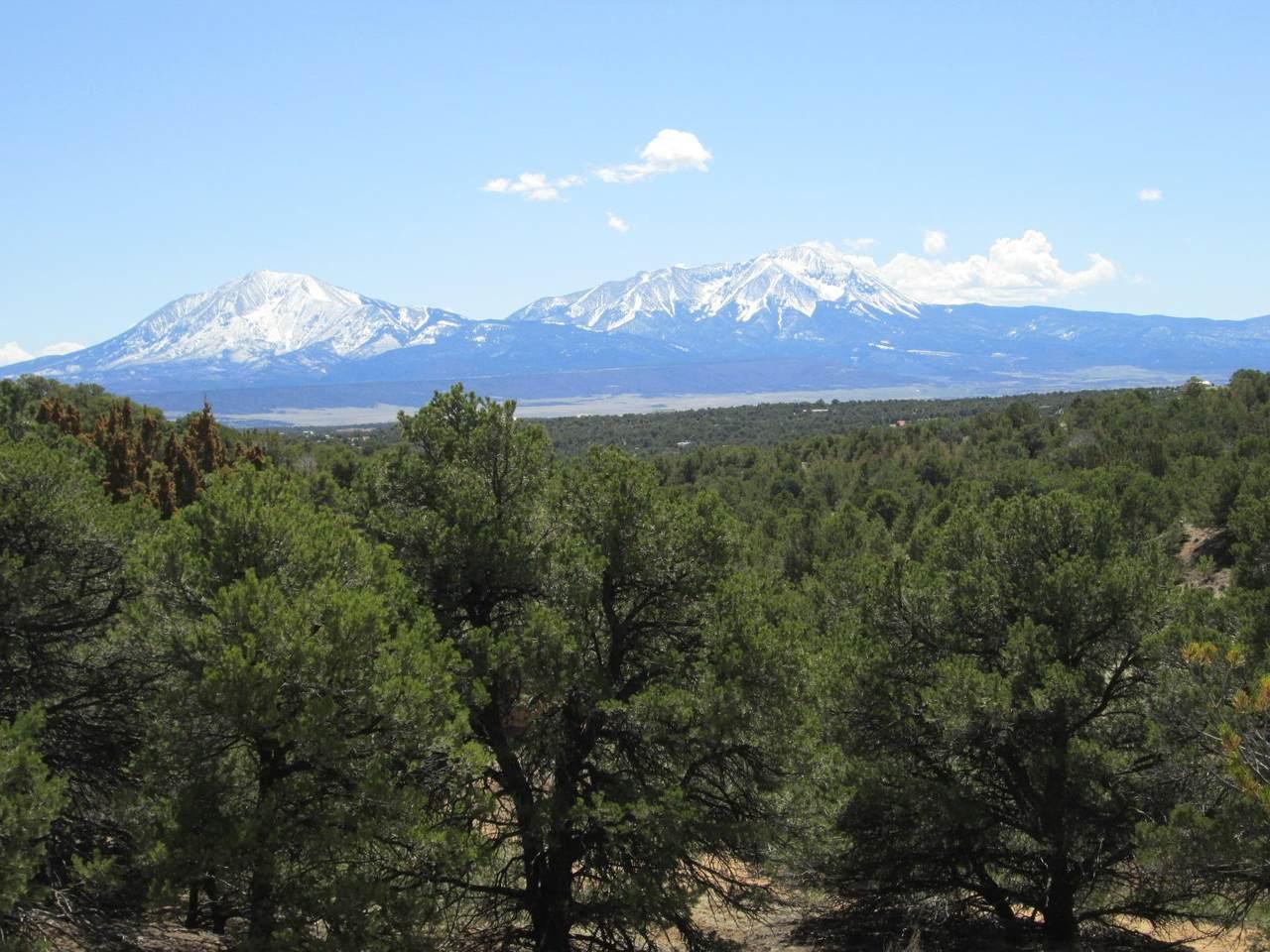 14 Phase 2 Majors Ranch - Photo 1