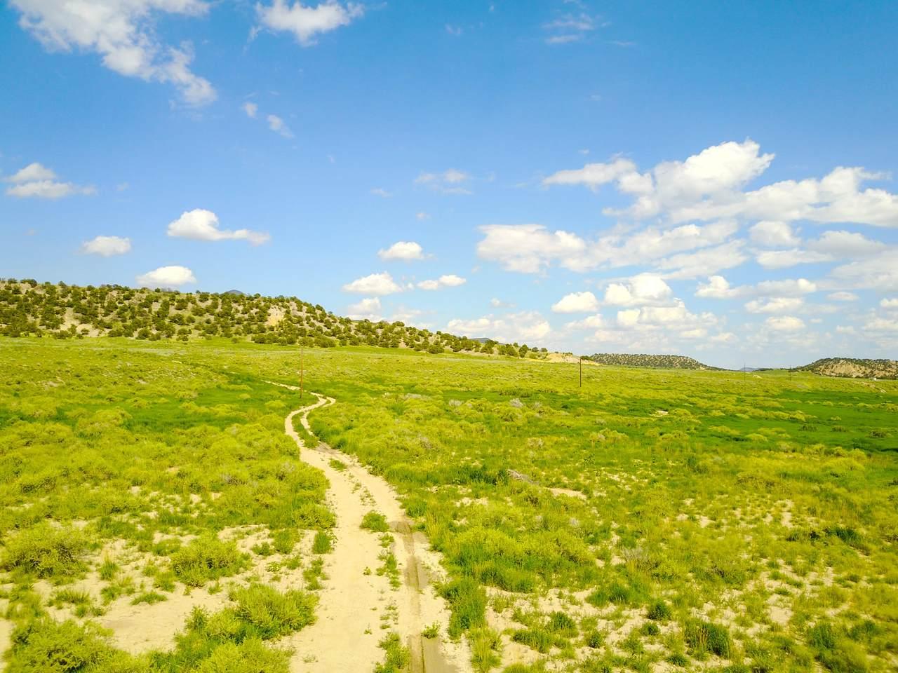 Turkey Creek Ranches - Photo 1